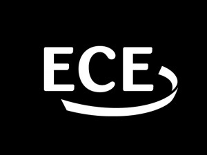 100 ECE Projects Topics for Students | Major Walter Nowotny